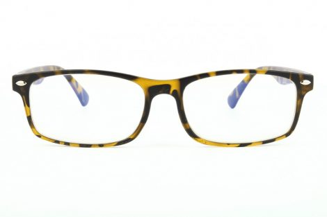 Computer glasses BLF83A